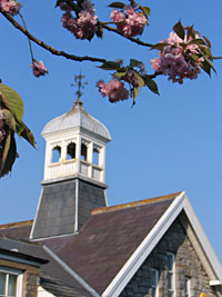 Blagdon Primary School bell tower in the spring