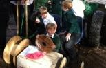investigating the materials